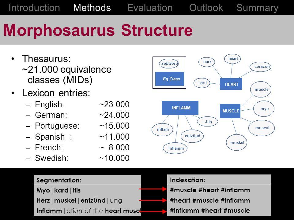 Morphosaurus Structure