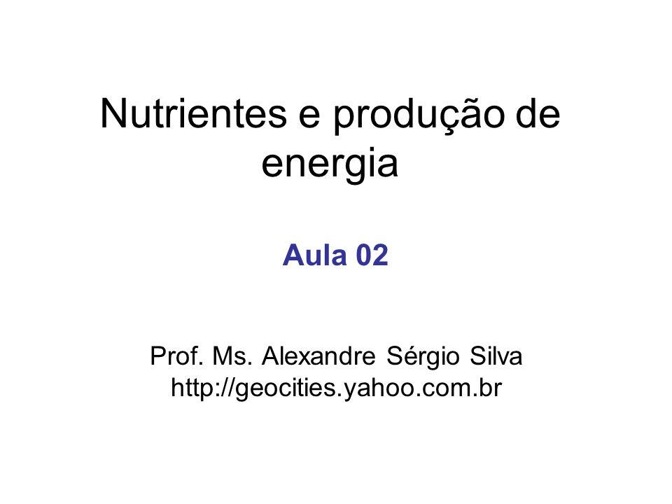 Nutrientes e produção de energia