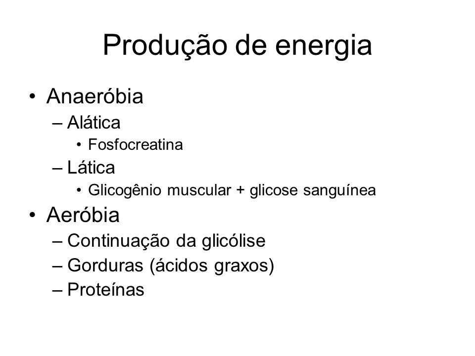 Produção de energia Anaeróbia Aeróbia Alática Lática