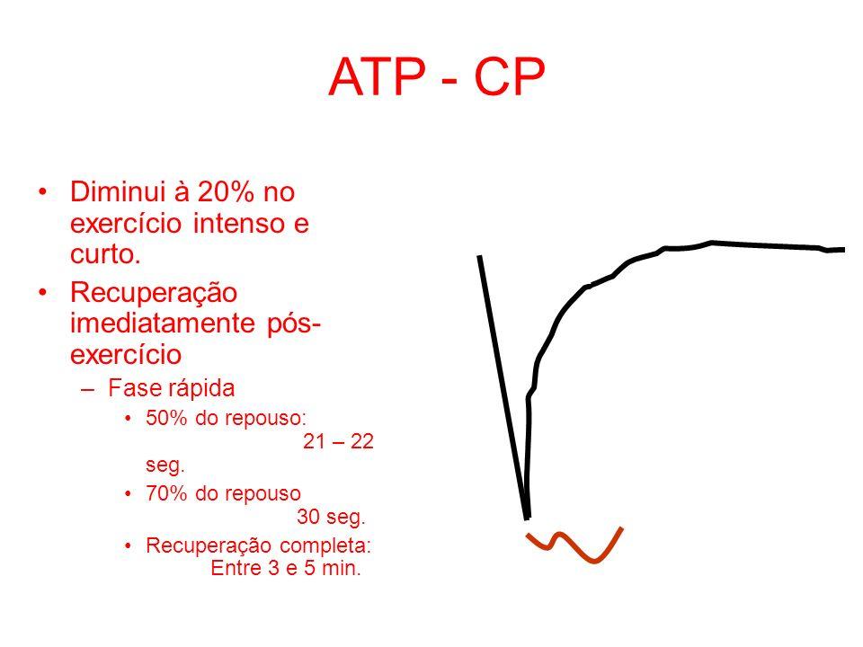 ATP - CP Diminui à 20% no exercício intenso e curto.