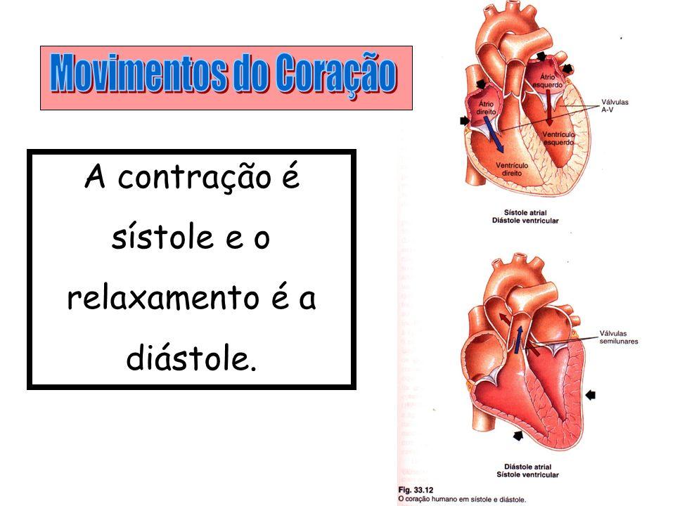 Movimentos do Coração A contração é sístole e o relaxamento é a diástole.
