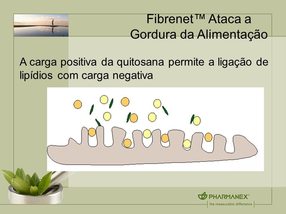 Fibrenet™ Ataca a Gordura da Alimentação