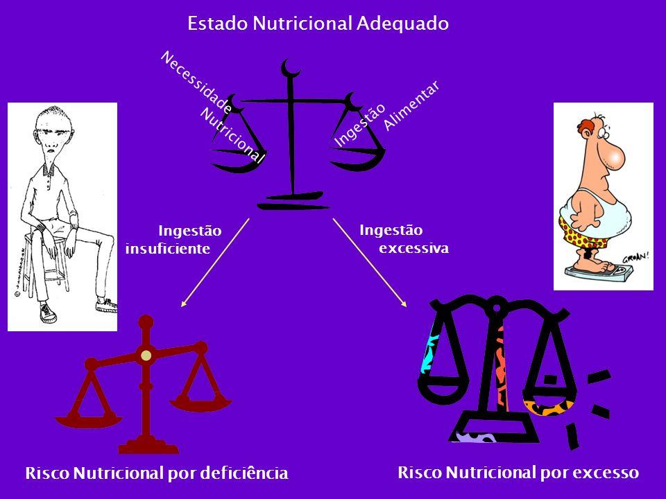 Estado Nutricional Adequado