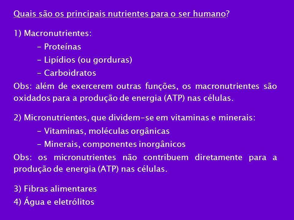Quais são os principais nutrientes para o ser humano