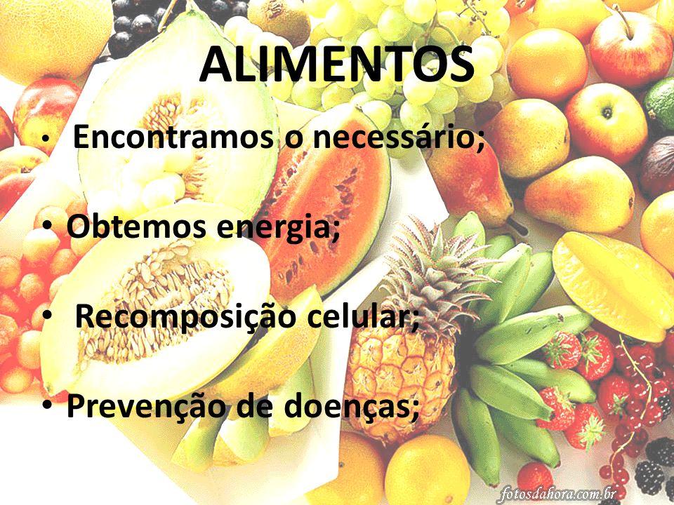 ALIMENTOS Obtemos energia; Recomposição celular; Prevenção de doenças;