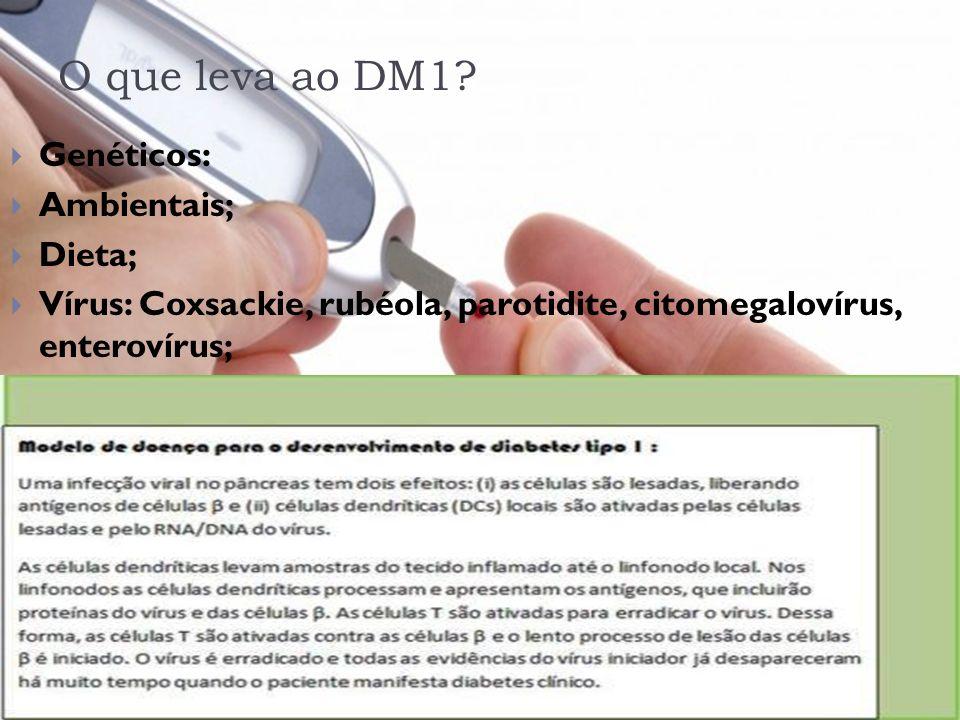 O que leva ao DM1 Genéticos: Ambientais; Dieta;