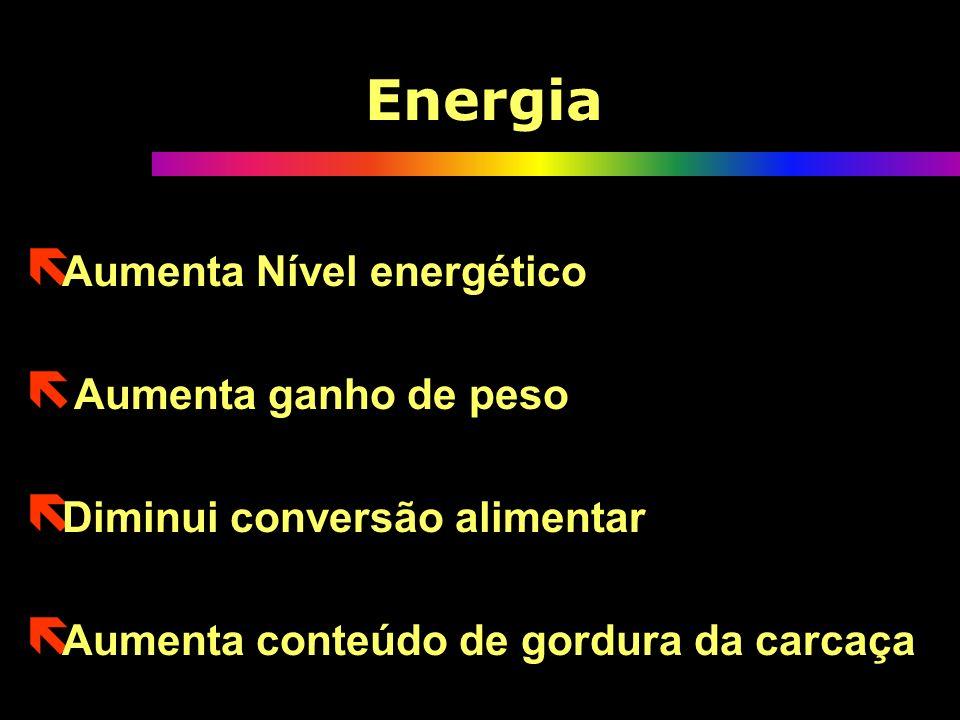 Energia Aumenta Nível energético Aumenta ganho de peso