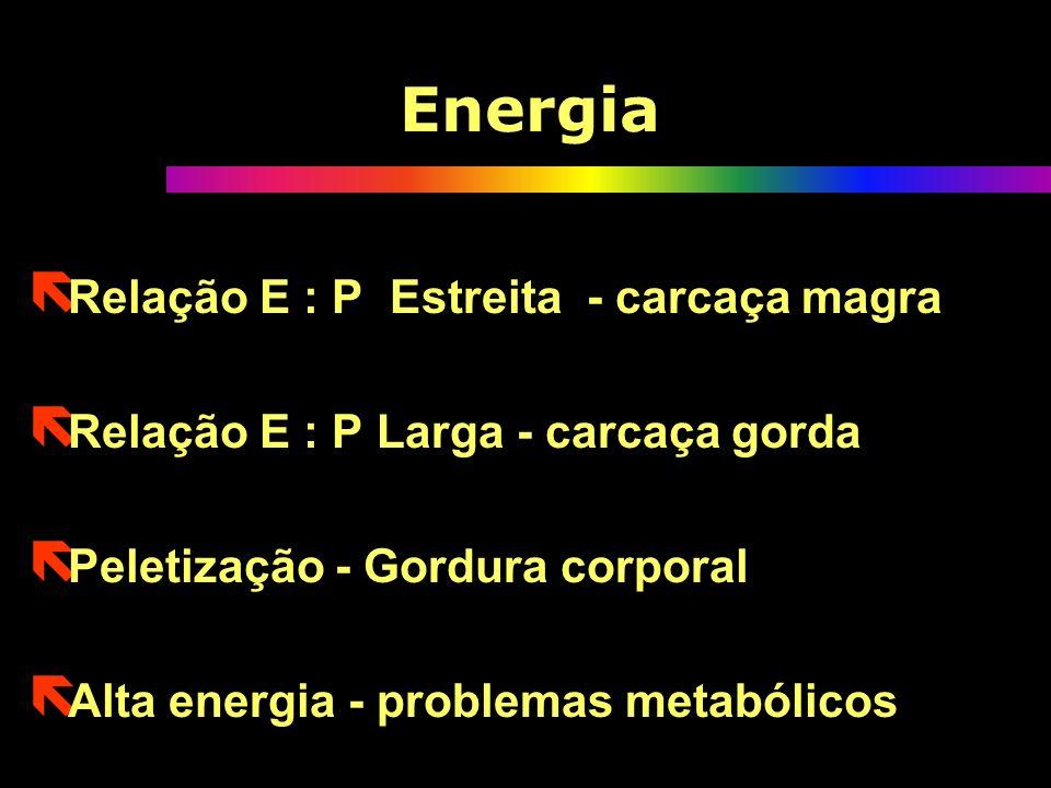 Energia Relação E : P Estreita - carcaça magra