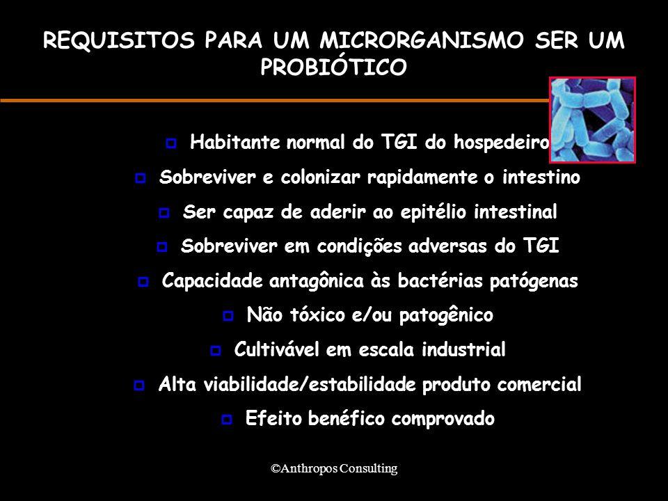 REQUISITOS PARA UM MICRORGANISMO SER UM PROBIÓTICO