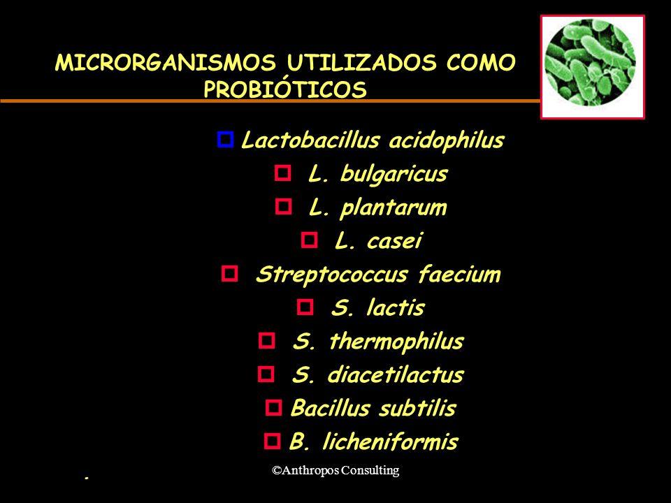 MICRORGANISMOS UTILIZADOS COMO PROBIÓTICOS