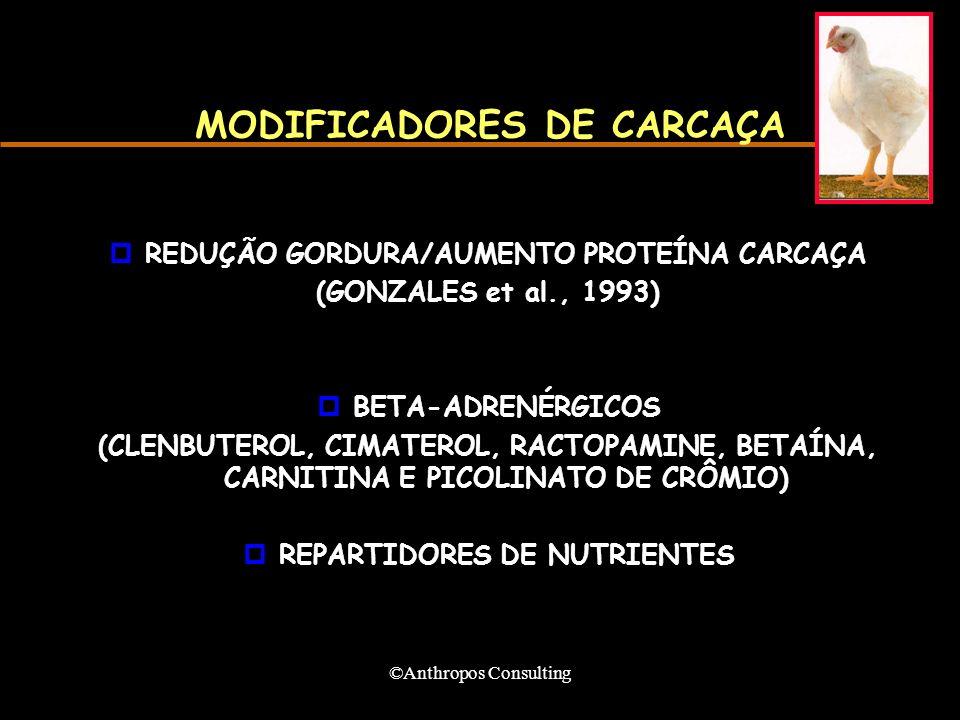 MODIFICADORES DE CARCAÇA