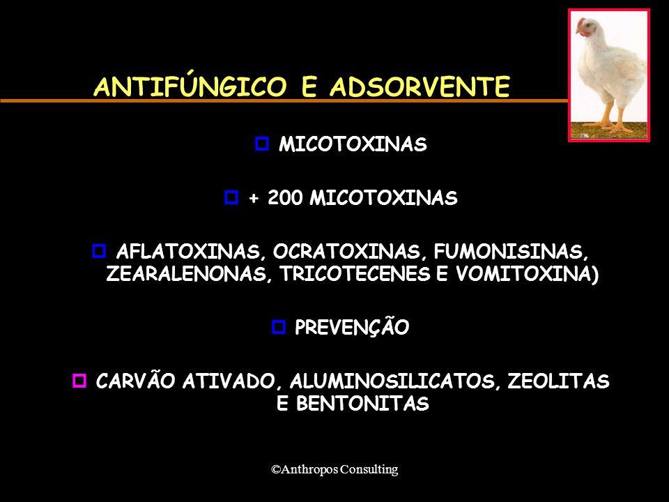 ANTIFÚNGICO E ADSORVENTE