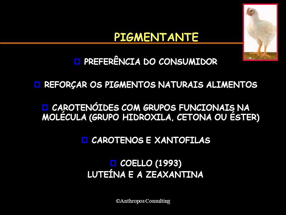 PIGMENTANTE PREFERÊNCIA DO CONSUMIDOR