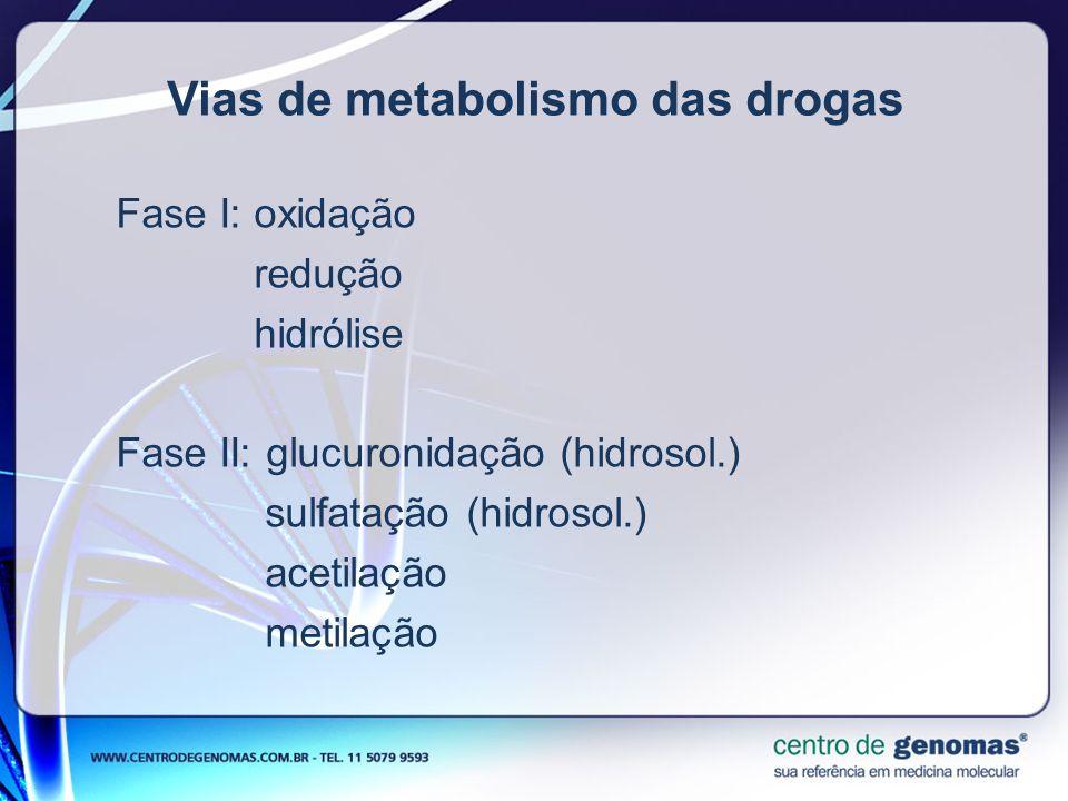 Vias de metabolismo das drogas