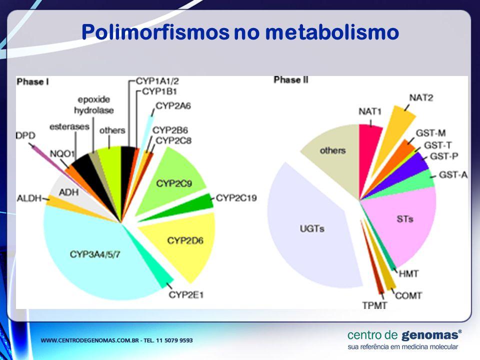 Polimorfismos no metabolismo