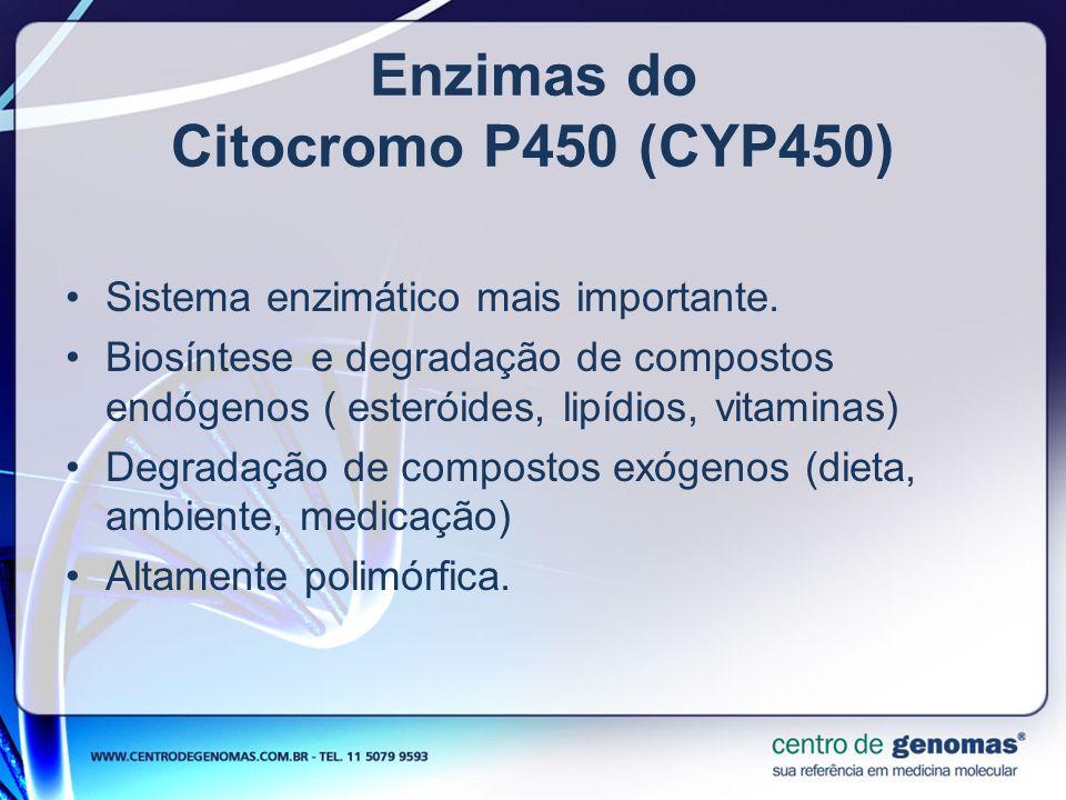 Enzimas do Citocromo P450 (CYP450)