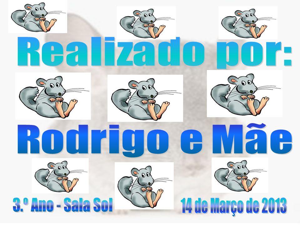 Realizado por: Rodrigo e Mãe 3.º Ano - Sala Sol 14 de Março de 2013