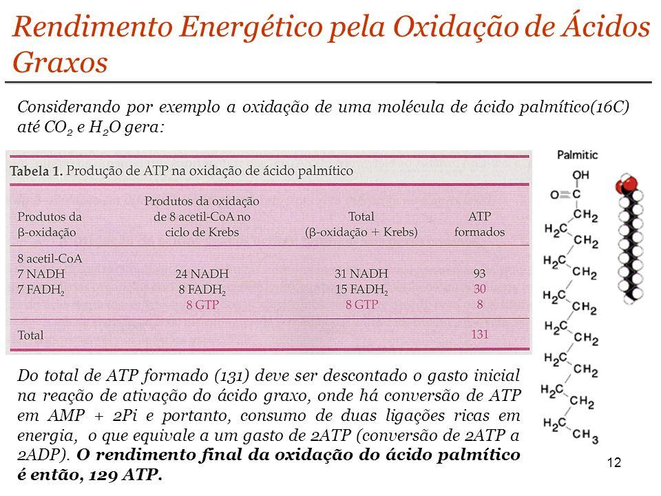 Rendimento Energético pela Oxidação de Ácidos Graxos
