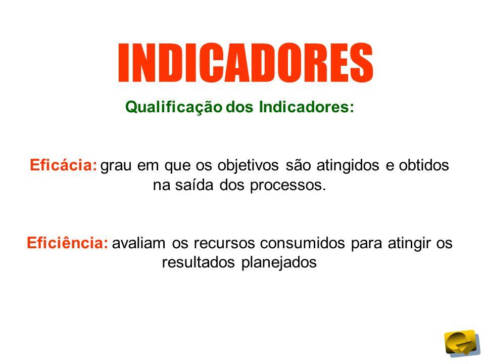 Qualificação dos Indicadores: