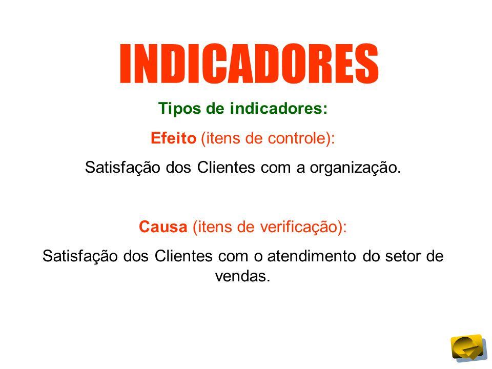 INDICADORES Tipos de indicadores: Efeito (itens de controle):