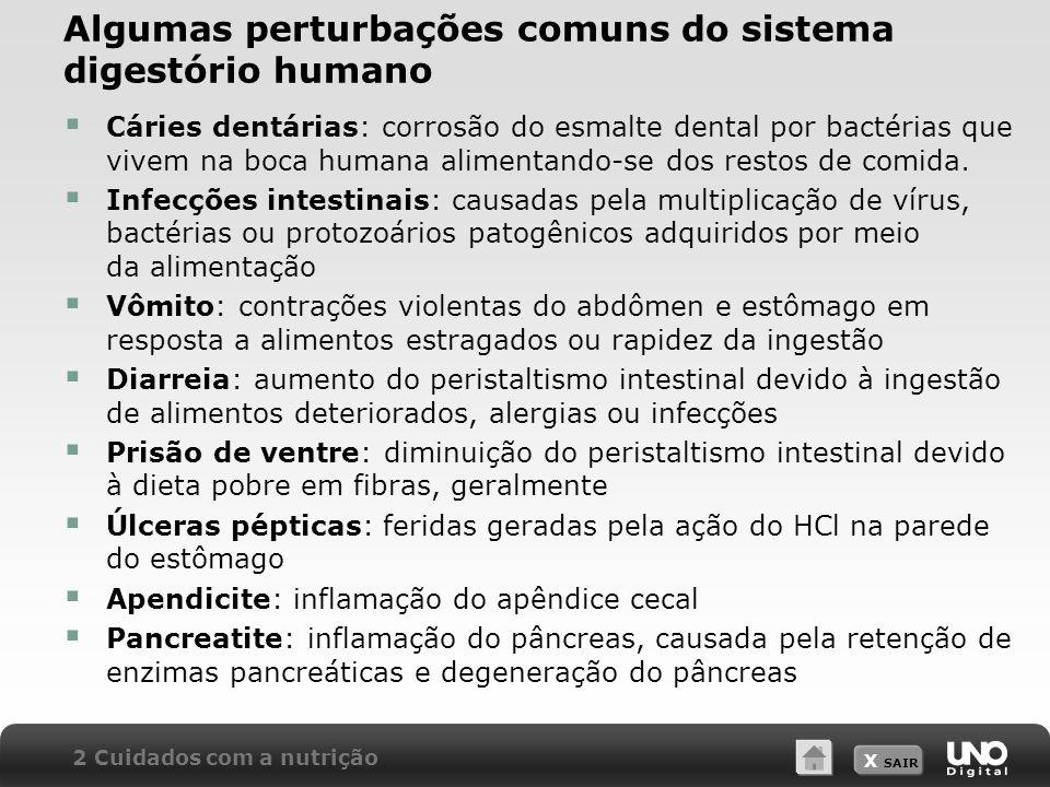 Algumas perturbações comuns do sistema digestório humano