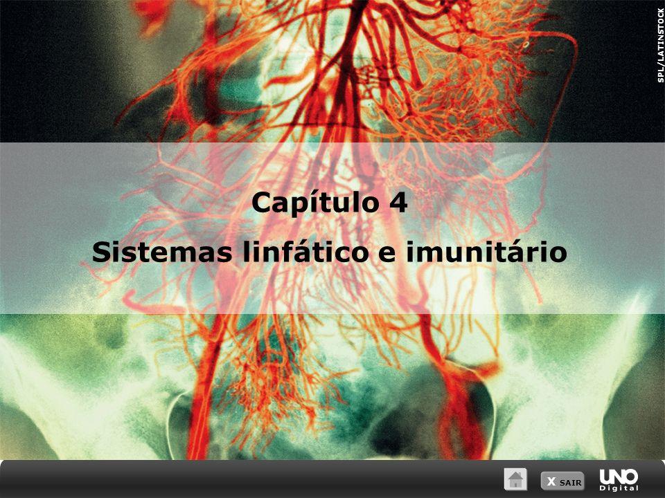 Sistemas linfático e imunitário
