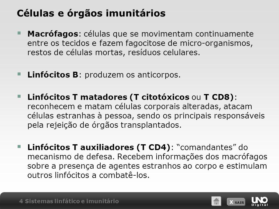 Células e órgãos imunitários