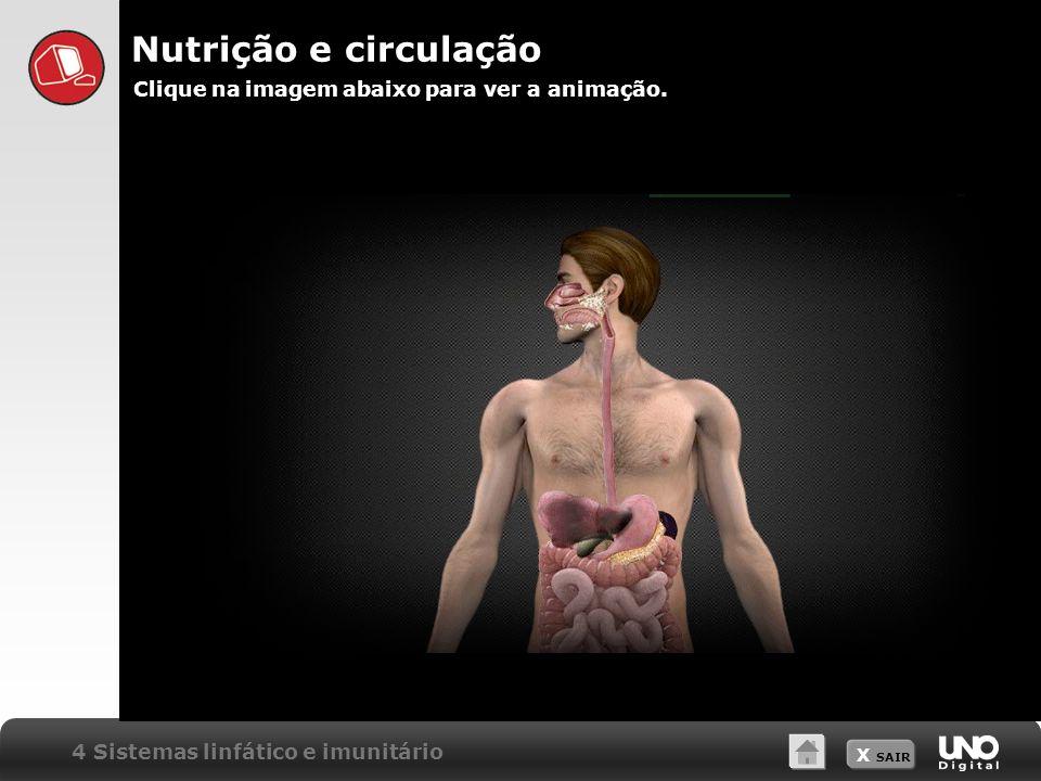Nutrição e circulação Clique na imagem abaixo para ver a animação.