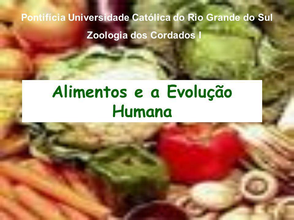 Alimentos e a Evolução Humana