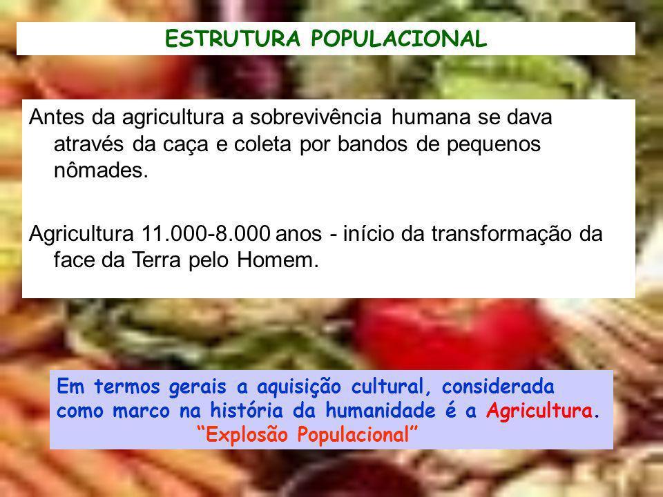 ESTRUTURA POPULACIONAL