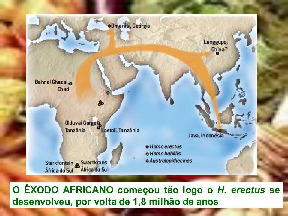 O ÊXODO AFRICANO começou tão logo o H