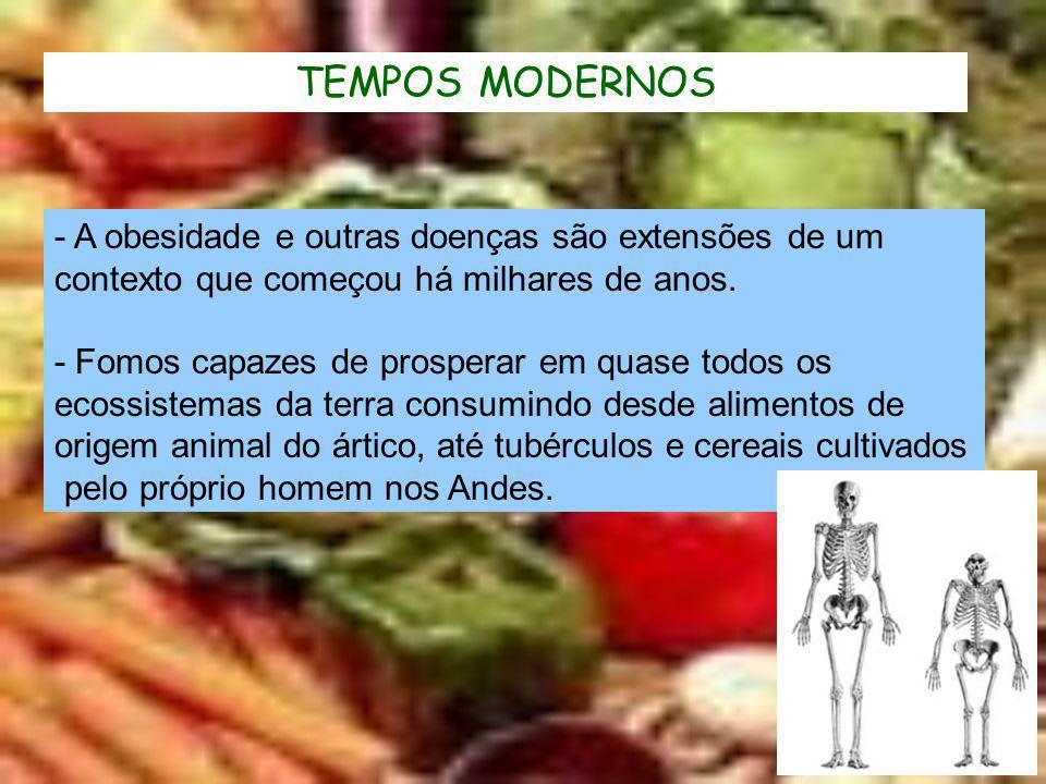 TEMPOS MODERNOS - A obesidade e outras doenças são extensões de um