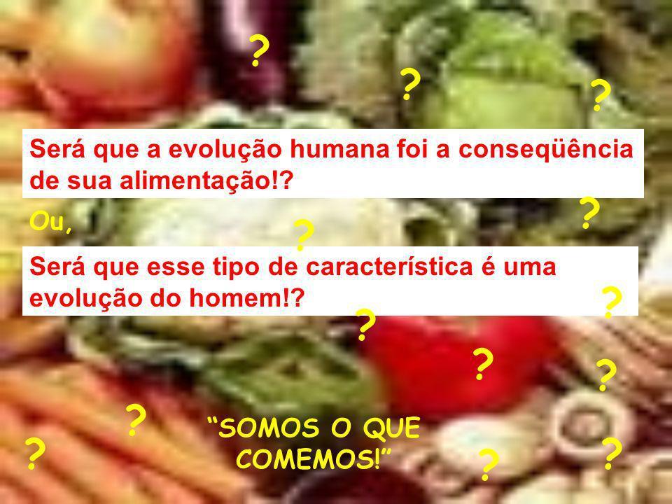Será que a evolução humana foi a conseqüência de sua alimentação! Ou,