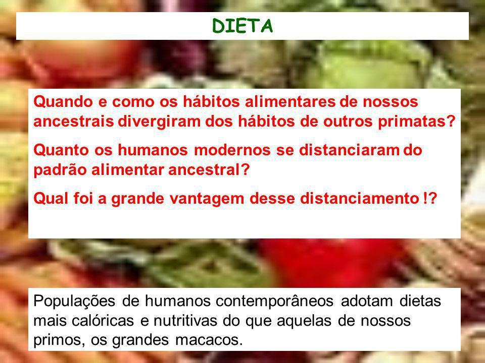 DIETA Quando e como os hábitos alimentares de nossos ancestrais divergiram dos hábitos de outros primatas
