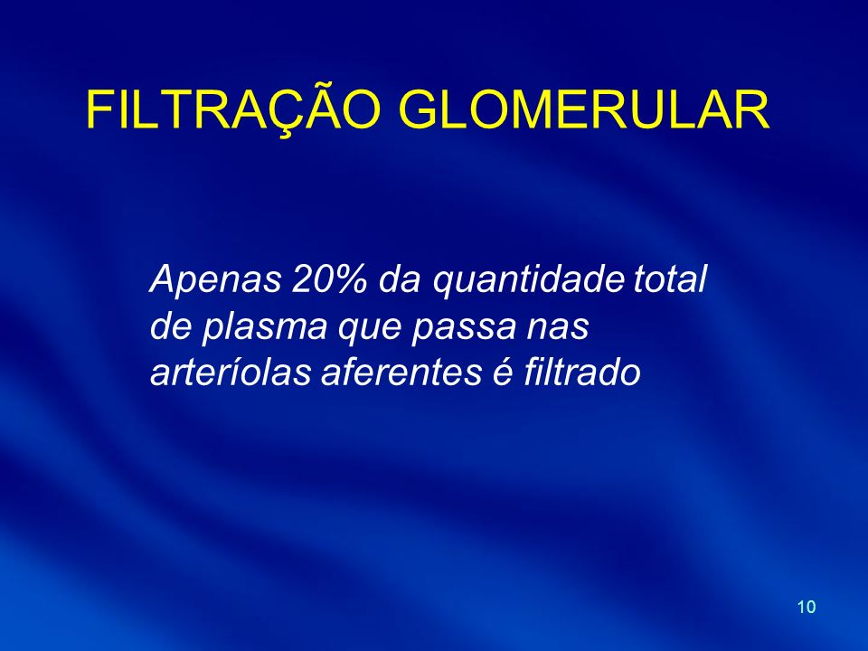 FILTRAÇÃO GLOMERULAR Apenas 20% da quantidade total de plasma que passa nas arteríolas aferentes é filtrado.
