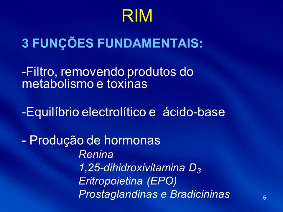 RIM 3 FUNÇÕES FUNDAMENTAIS: