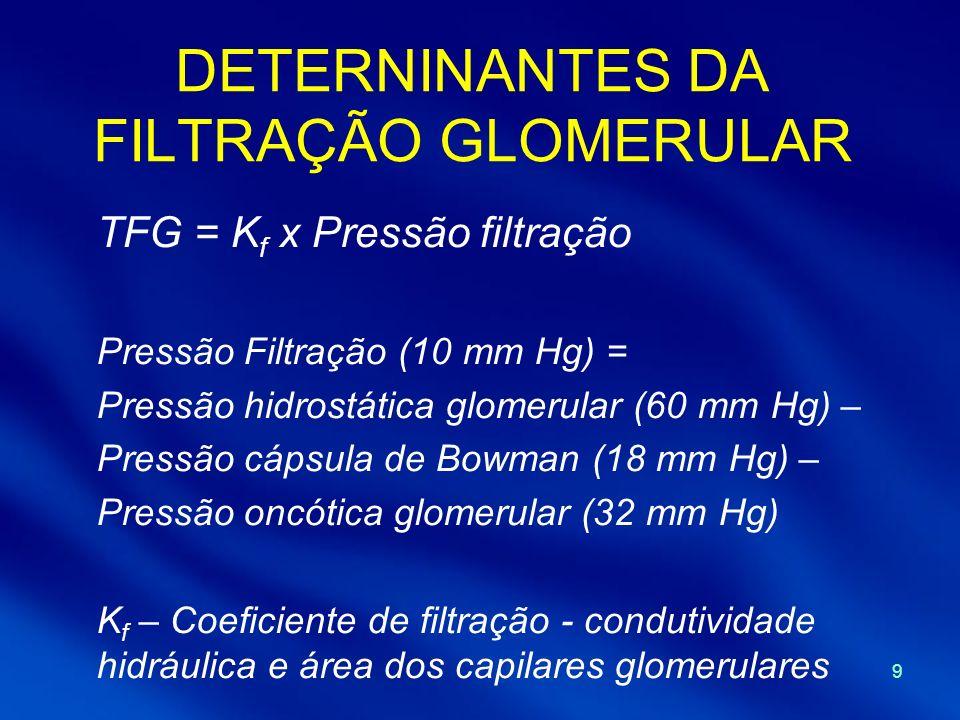 DETERNINANTES DA FILTRAÇÃO GLOMERULAR