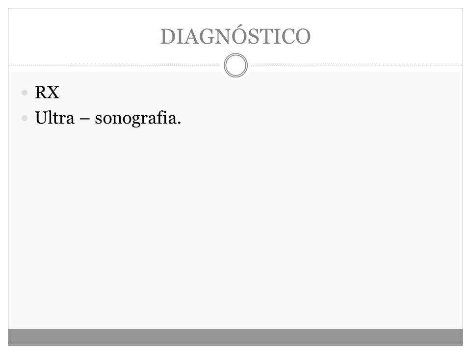 DIAGNÓSTICO RX Ultra – sonografia.