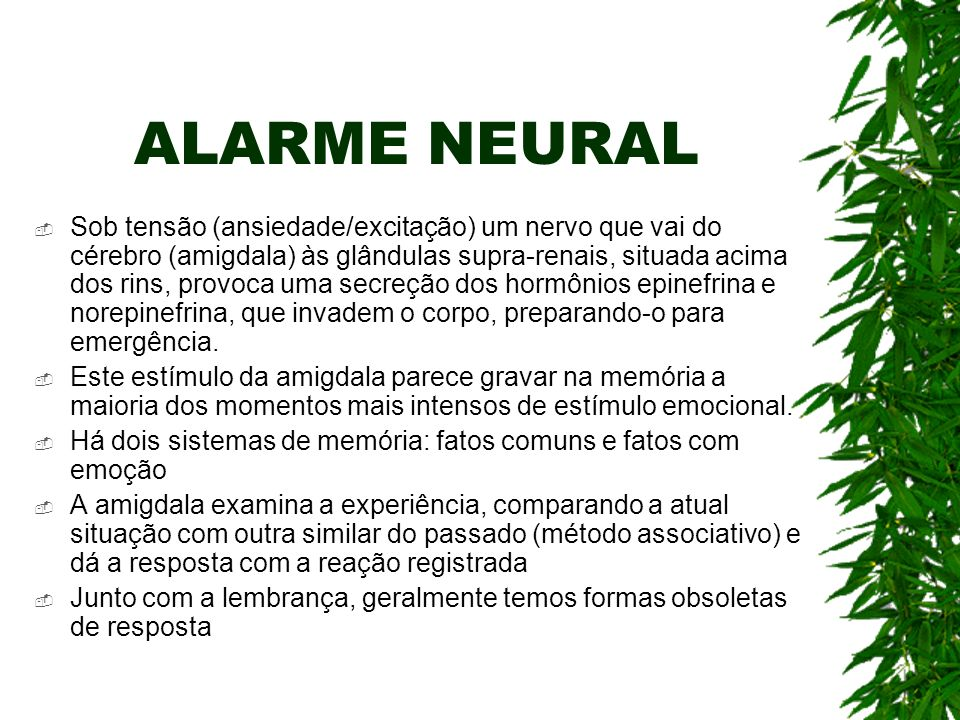 ALARME NEURAL