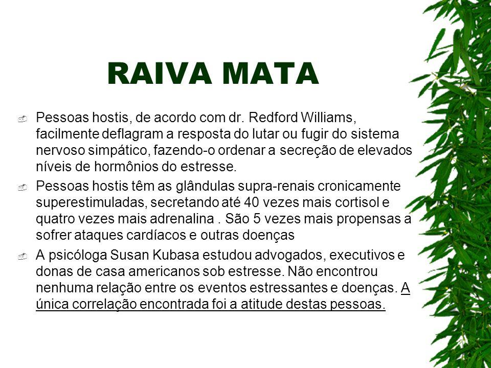 RAIVA MATA