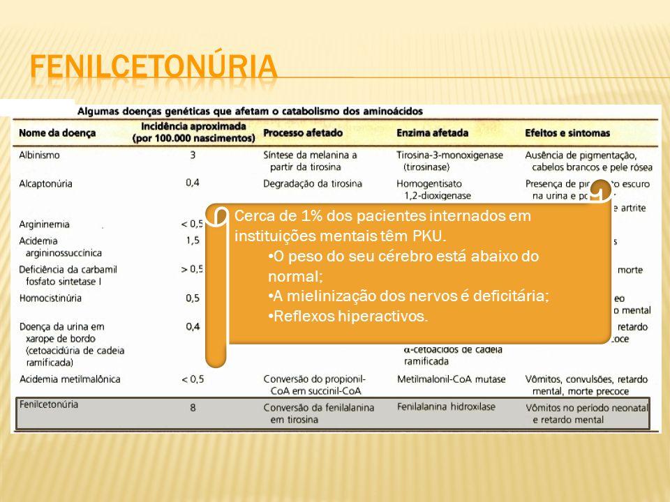 Fenilcetonúria Cerca de 1% dos pacientes internados em instituições mentais têm PKU. O peso do seu cérebro está abaixo do normal;