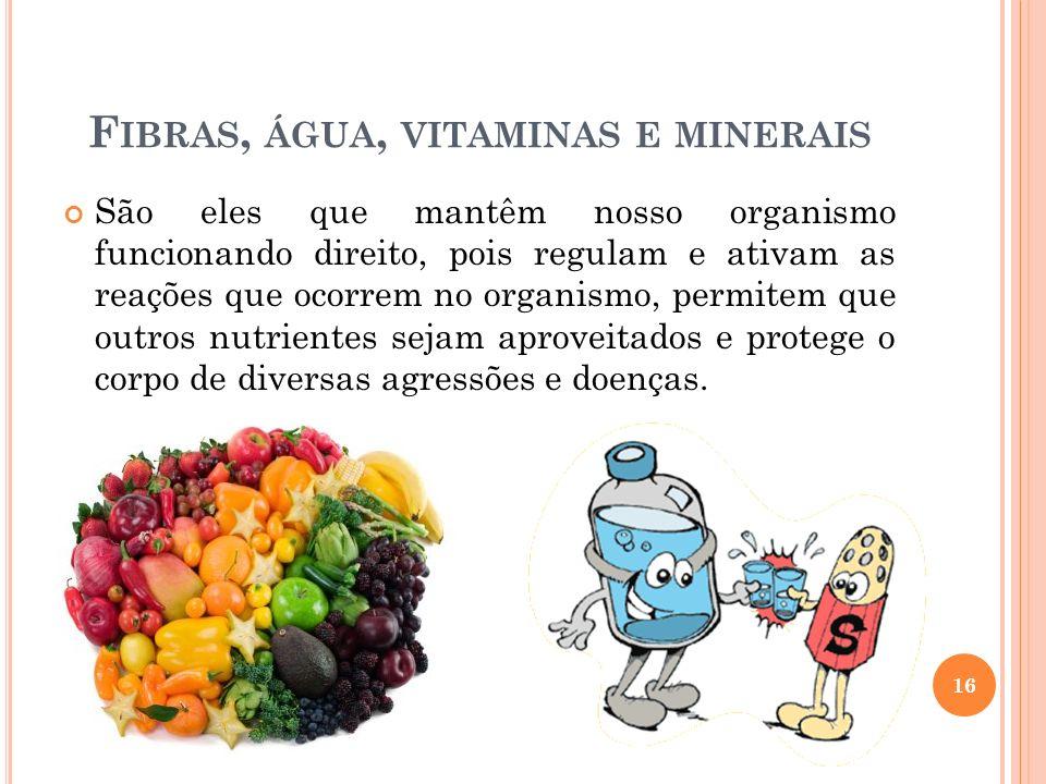 Fibras, água, vitaminas e minerais