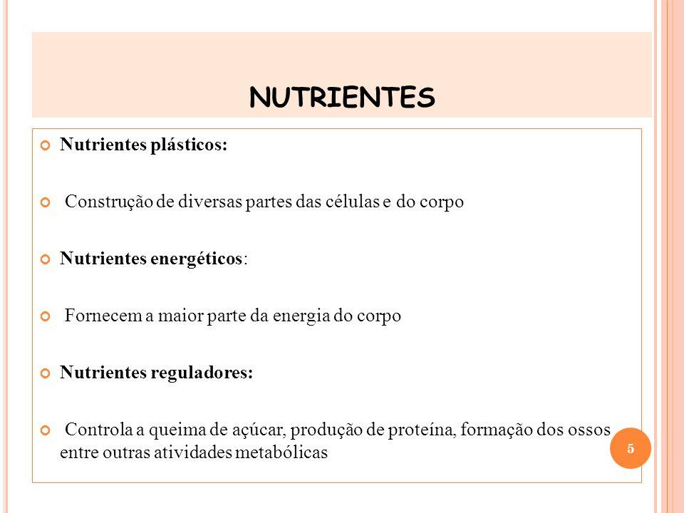 nutrientes Nutrientes plásticos: