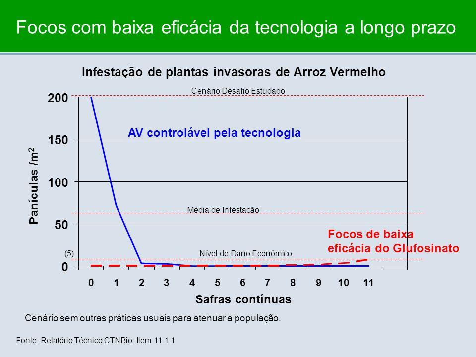 Focos com baixa eficácia da tecnologia a longo prazo