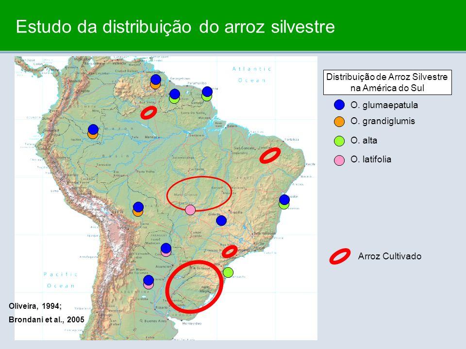 Estudo da distribuição do arroz silvestre