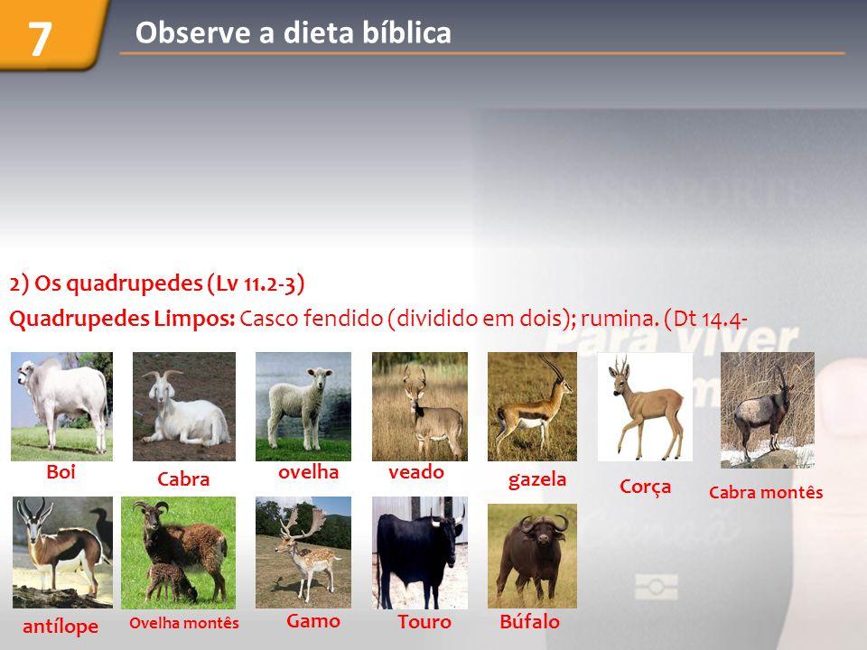 7 Observe a dieta bíblica