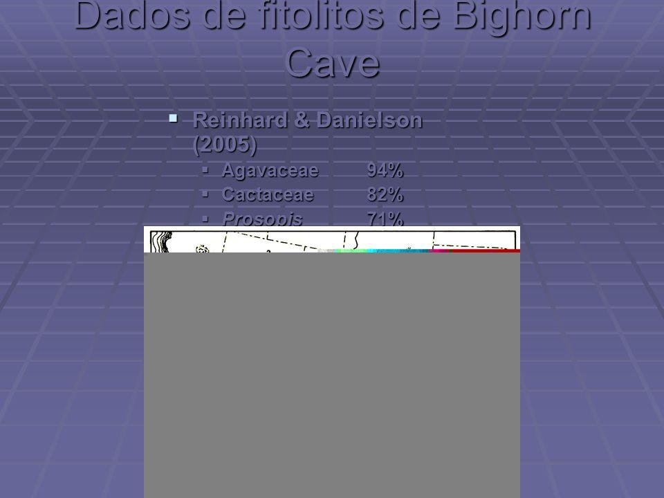 Dados de fitolitos de Bighorn Cave