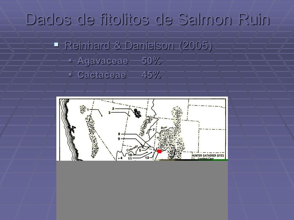 Dados de fitolitos de Salmon Ruin