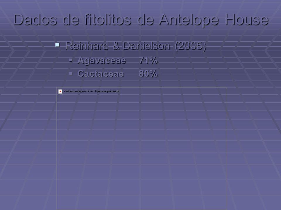Dados de fitolitos de Antelope House