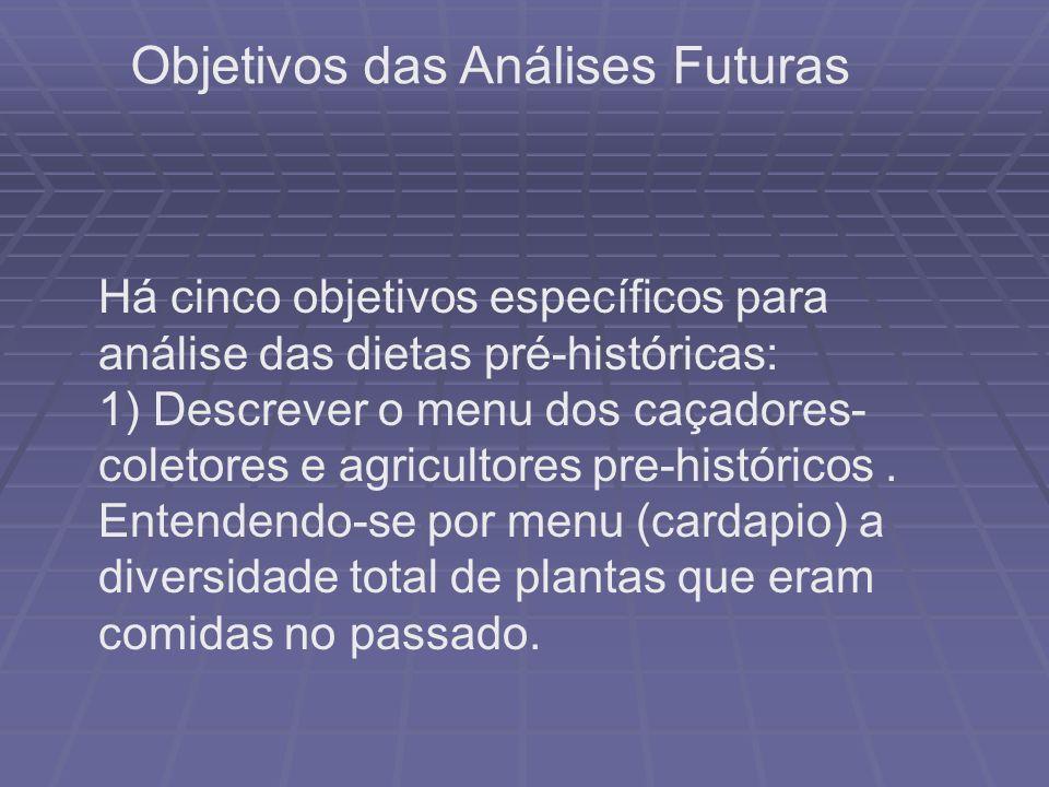 Objetivos das Análises Futuras